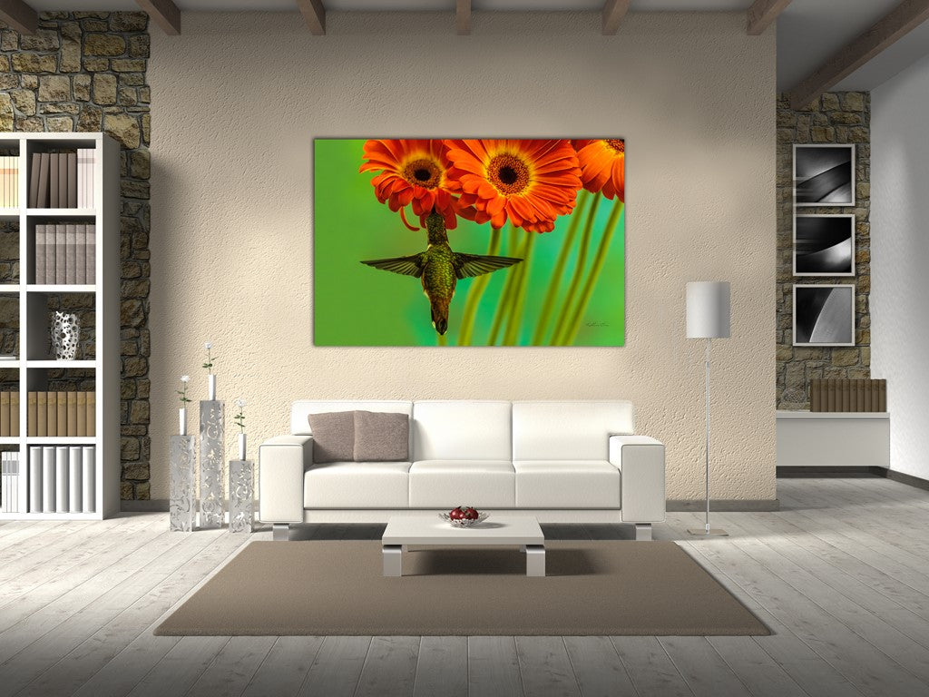 Picture of Gerbera Daisies 8 hanging in a room.