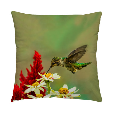 "Green Goddess hummingbird photograph on a 16"" square pillow."