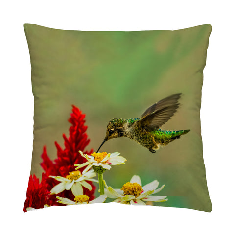 "Green Goddess hummingbird photograph on a 20"" square pillow."