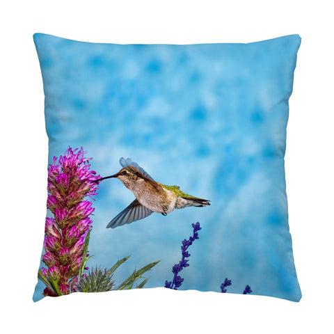 "Looking Up hummingbird photograph on a 16"" square pillow."