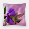 Image of pillow printed with a purple morning glory and a hummingbird