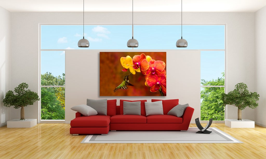 Picture of Orchid Attraction hanging in a room.