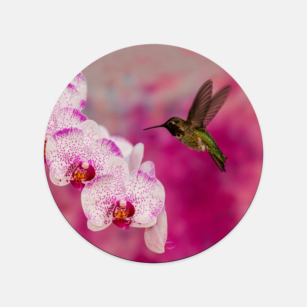 Orchid Attraction 2 photograph printed on a round mouse pad.
