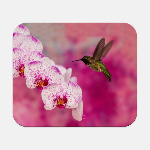 Orchid Attraction 2 photograph printed on a rectangular mouse pad.