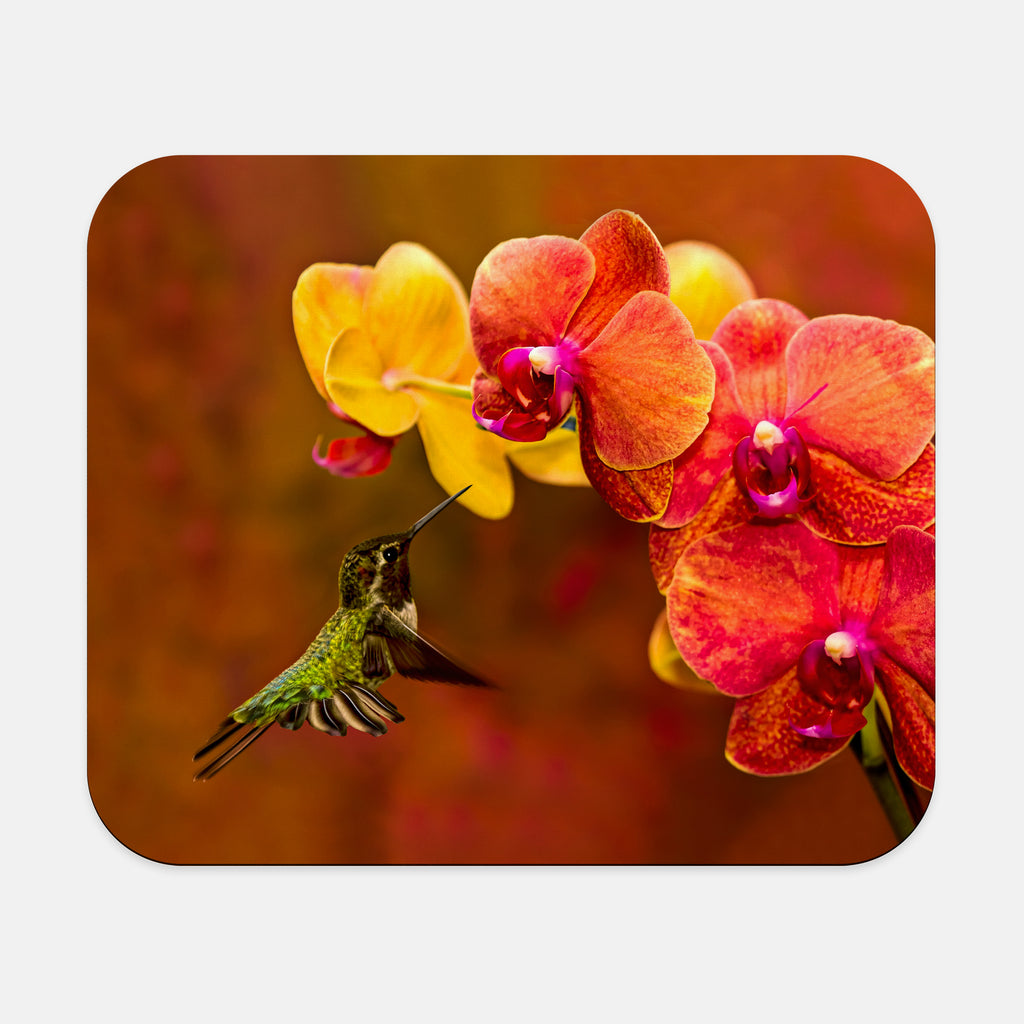 Orchid Attraction photograph printed on a rectangular mouse pad.
