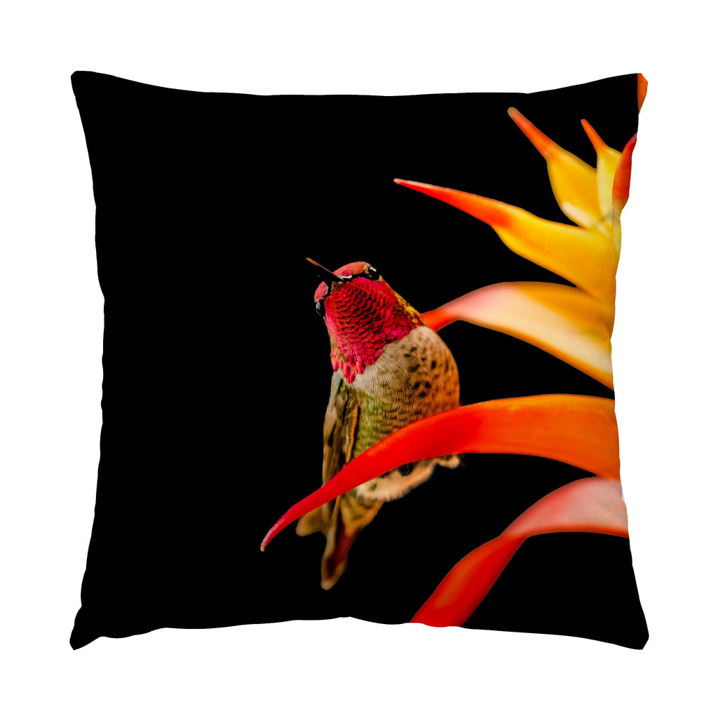 "Peek-A-Boo hummingbird photograph on a 16"" square pillow."