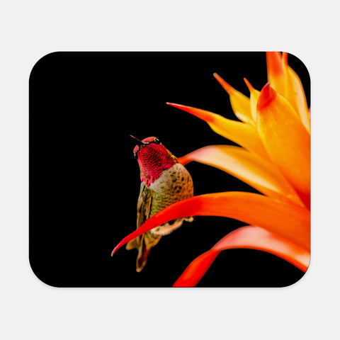 Peek-A-Boo photograph printed on a rectangular mouse pad.