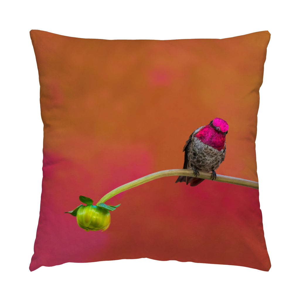 "Secret Garden hummingbird photograph on a 16"" square pillow."