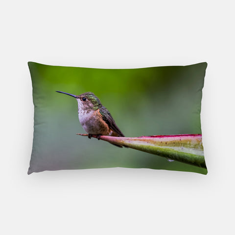 Shelter From The Rain photograph printed on a lumbar pillow.