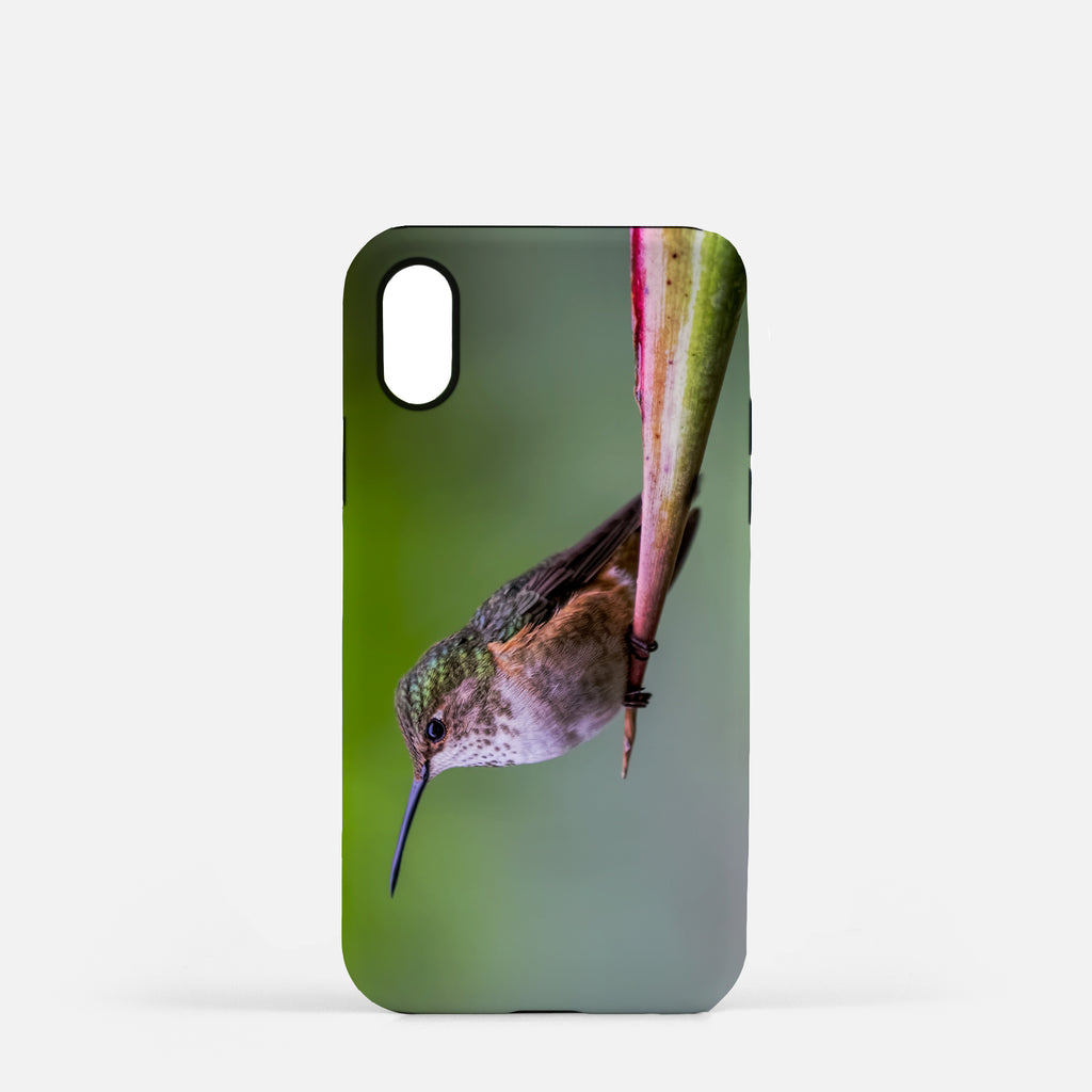 Shelter From The Storm photograph printed on an iPhone X case.