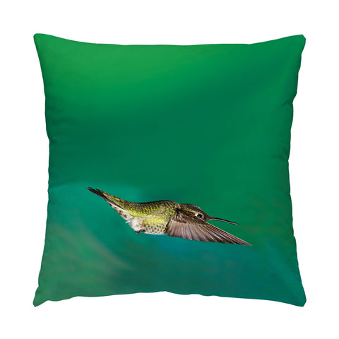 "Top Gun hummingbird photograph on a 16"" square pillow."