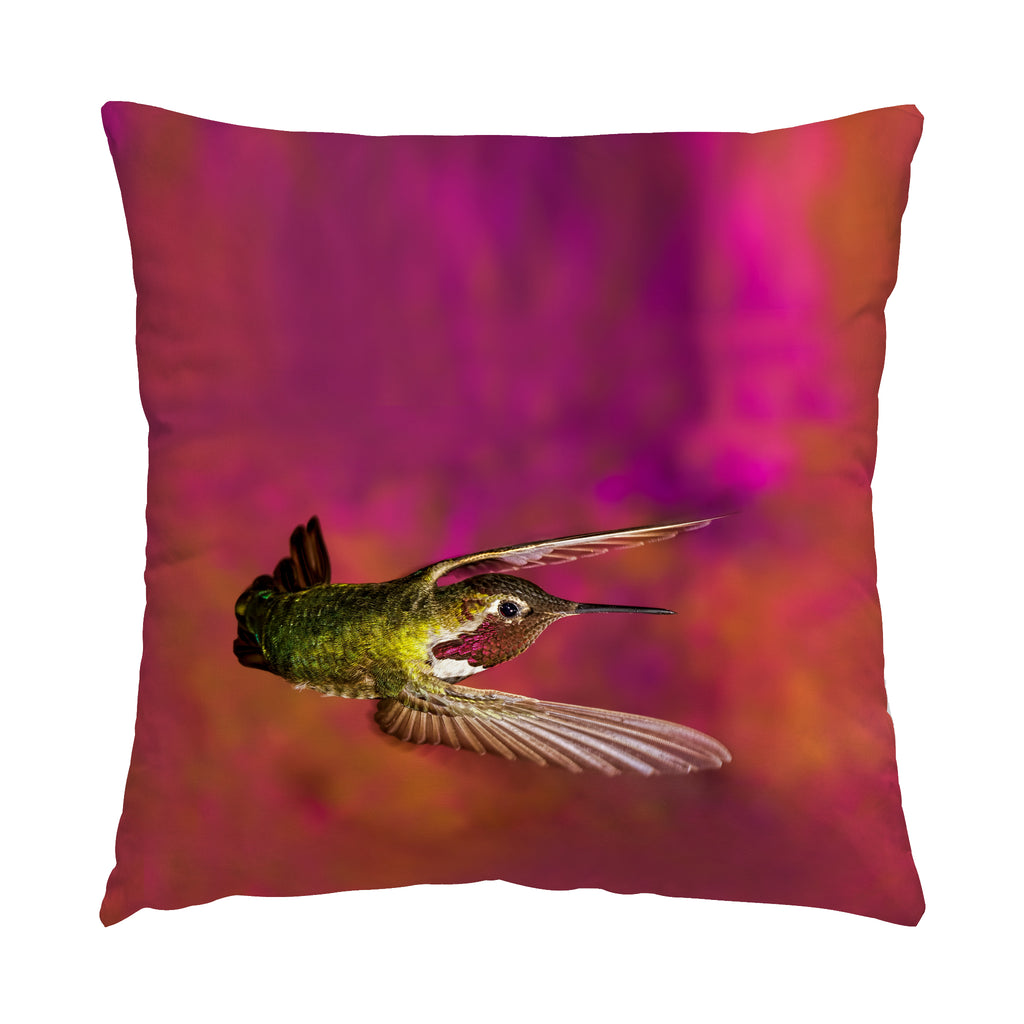 "Touchdown hummingbird photograph on a 20"" square pillow."