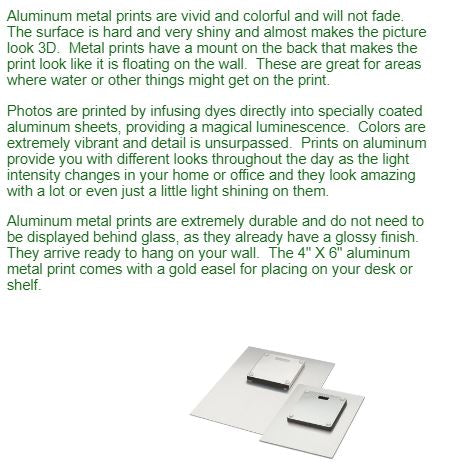 Description and picture of metal prints.