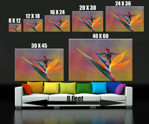 Photograph of picture sizes above a couch.