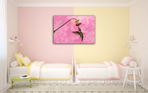 Picture of Aster Bud In Pink hanging in a room.