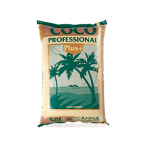 COCO Professional Plus