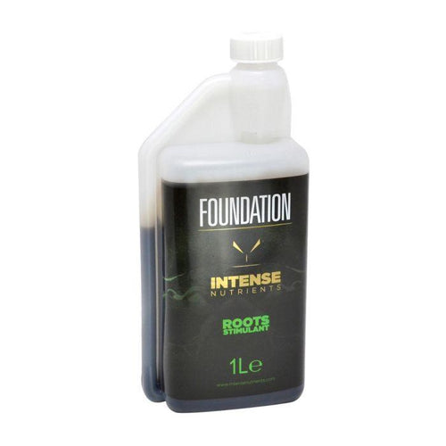 Intense Foundation 1L