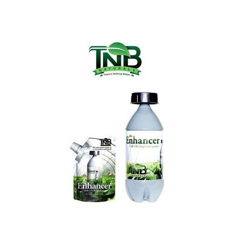 TNB Co2 canister 240g