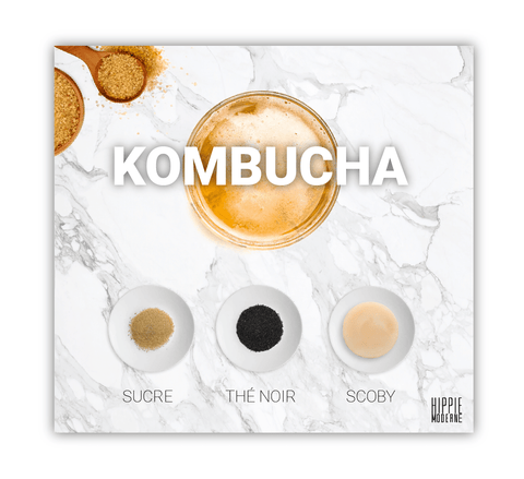 comment faire du Kombucha?