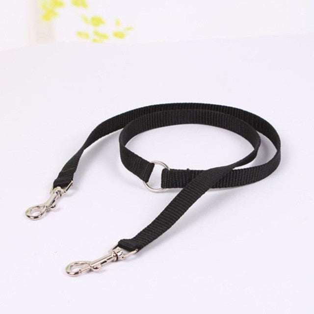 Bright and adjustable leash for dogs