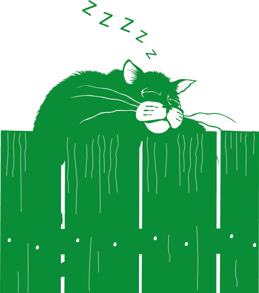 Wall Stickers Gatto sulla staccionata MyCollection