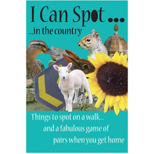 I can spot in the country - 2 in 1 card game