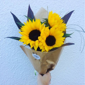 Sunflower Sunshine - Broadfield Flowers Florist Lincoln, Christchurch