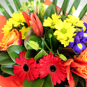 Bright and Bold - Broadfield Flowers Florist Lincoln, Christchurch