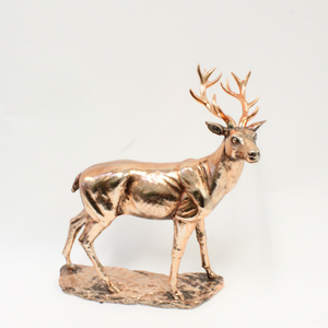 Bronze Stag - Broadfield Flowers Florist Lincoln
