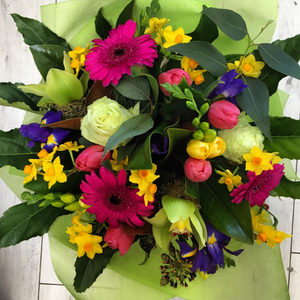 Candy - Broadfield Flowers Florist Lincoln, Christchurch