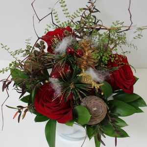A Pot-Full of Christmas - Broadfield Flowers Florist Lincoln, Christchurch