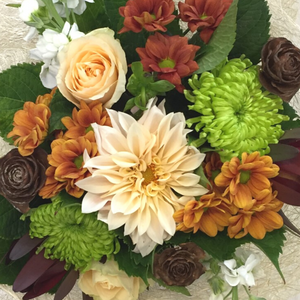 Triple Chocolate - Broadfield Flowers Florist Lincoln, Christchurch