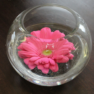 Flowers in a Fishbowl - Broadfield Flowers Florist Lincoln, Christchurch