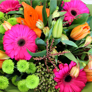 Neon Glow - Broadfield Flowers Florist Lincoln, Christchurch