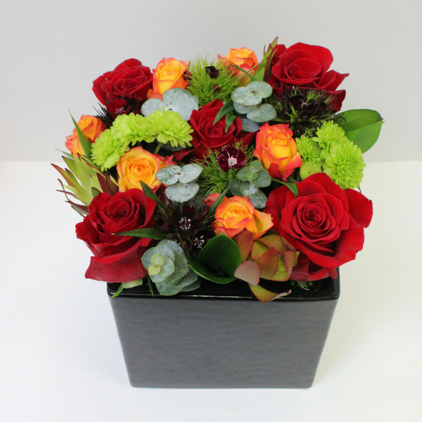 Flower Pot - Broadfield Flowers Florist Lincoln, Christchurch