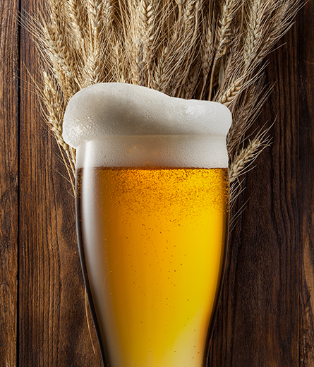 wheat_beer_in_glass_with_wheat