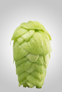 Eclipse® HPA-016 AU Hops - NEW!