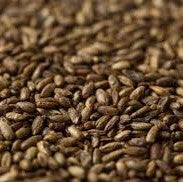 Gladfield Crystal Rye Malt