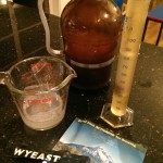 Wyeast Lambic Blend