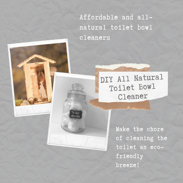 DIY All Natural Toilet Bowl Cleaner