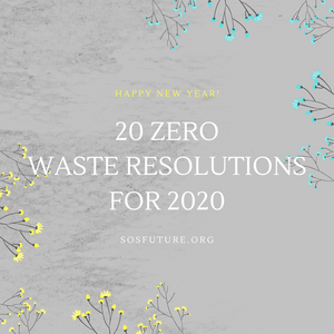 20 Zero Waste Resolutions For 2020
