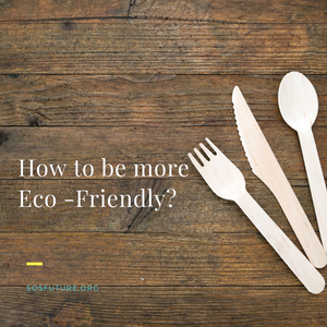 How to be More Eco-Friendly