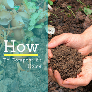 How To Compost At Home?