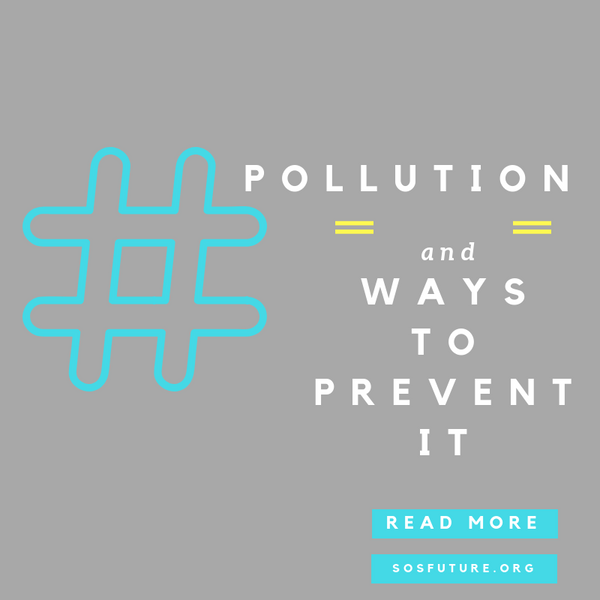 Pollution and ways to prevent pollution