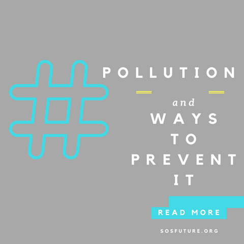 pollution and ways to prevent it