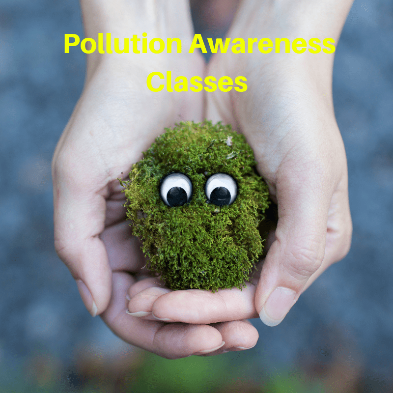 Pollution Awareness Classes