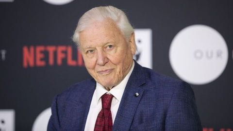 David Attenborough's New Series is Coming to Netflix