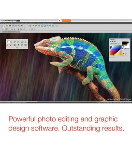 PaintShop Pro 2019 Powerful Software Reptile Screenshot