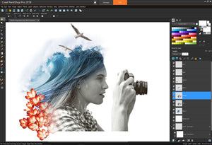 Buy PaintShop Pro
