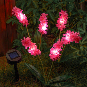 Solar-Powered LED Hyacinth 3 Piece Stake Set